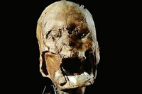 New research robs French king Henry IV of his head
