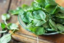 Eating leafy greens could enhance your sports performance