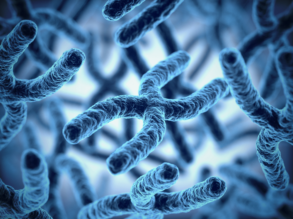 Resultado de imagem para pensamentos e DNA