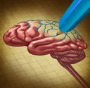 New chimeric model is step forward for Alzheimer's research